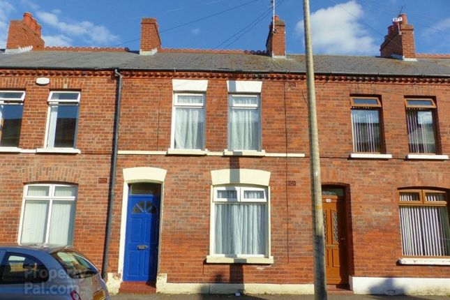 Thumbnail Terraced house to rent in Walmer Street, Belfast