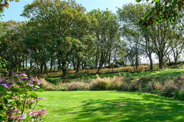 Garden of Vicarage Hill, Tintagel, Cornwall PL34