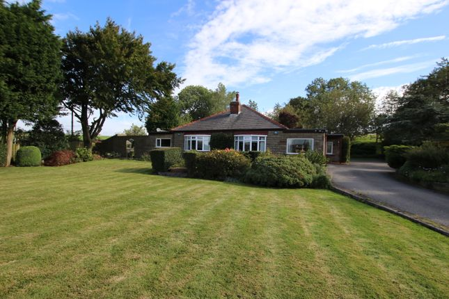 Thumbnail Detached bungalow for sale in Four Lane Ends, Oxspring, Sheffield