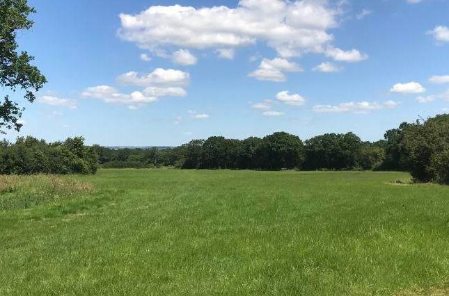 Thumbnail Land for sale in Land At Cripple Hill, High Halden, Ashford, Kent