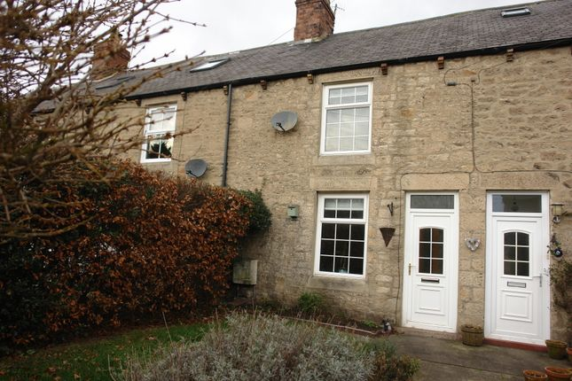 Thumbnail Cottage to rent in Castle View, Ovingham, Northumberland