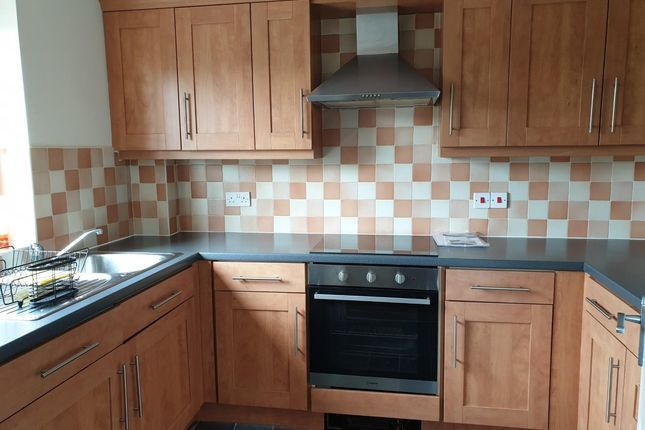 Thumbnail Flat to rent in Brandling Court, North Shields