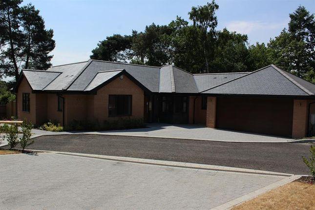 Thumbnail Detached bungalow for sale in Poppy Close, St.Ives Park, Ringwood