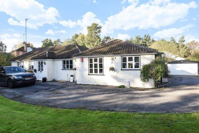 Thumbnail Detached bungalow to rent in Woodlands Ride, Ascot