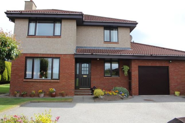 Thumbnail Detached house to rent in Knockothie Hill, Ellon