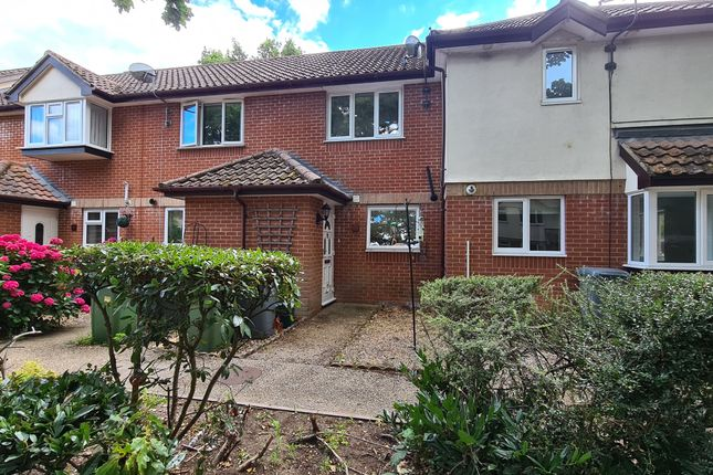 Thumbnail Terraced house for sale in Mulberry Court, Taverham, Norwich