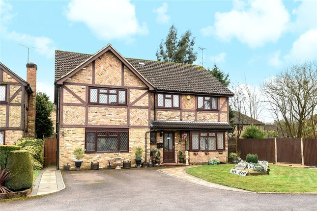 Thumbnail Detached house for sale in Comfrey Close, Farnborough, Hampshire