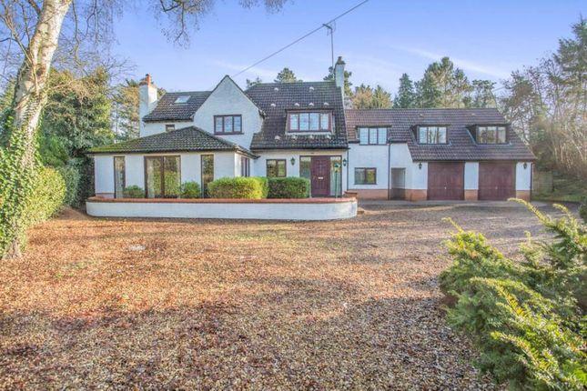 Thumbnail Detached house for sale in East Winch Road, Ashwicken, King's Lynn, Norfolk