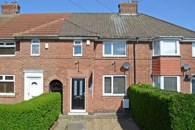 Thumbnail Terraced house to rent in Tudor Road, York