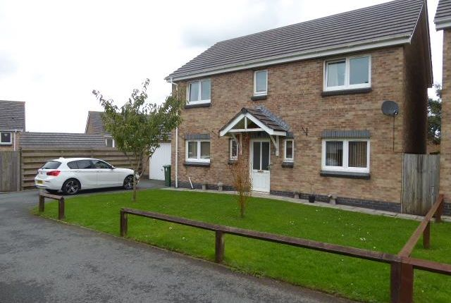 Thumbnail Detached house to rent in Skomer Drive, Milford Haven