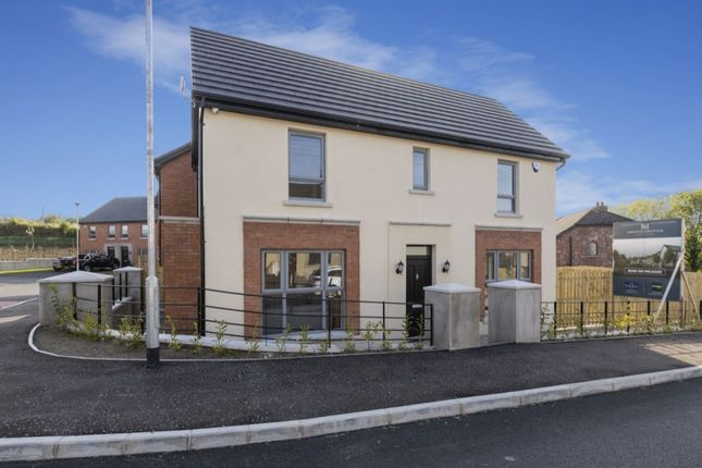Thumbnail Detached house for sale in Postmaster's Walk, Ravernet Road, Lisburn