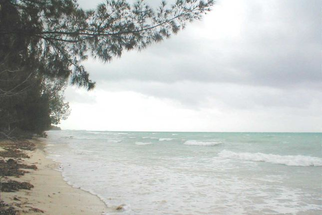 Land for sale in Turtle Reef, East End, Grand Bahama, The Bahamas