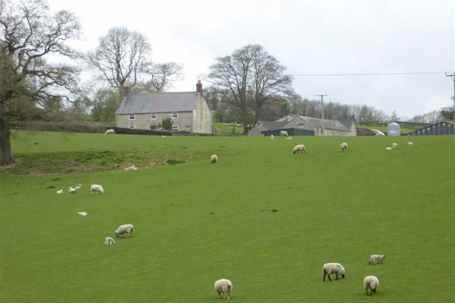 Thumbnail Farm for sale in Farm For Sale, Gwernaffield, Mold
