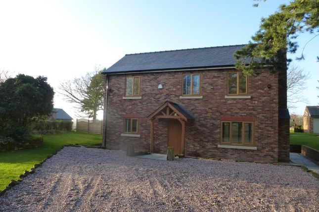 Thumbnail Semi-detached house to rent in Back Lane, Helsby, Frodsham