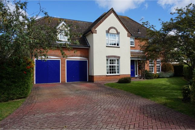 Thumbnail Detached house for sale in De Vere Close, Hatfield Peverel