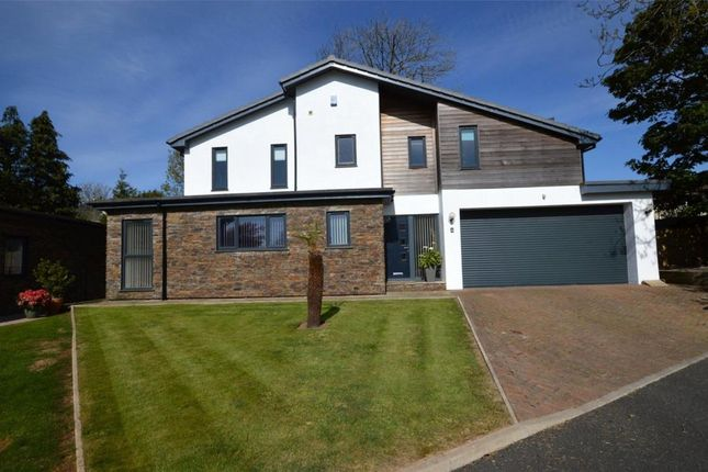 Thumbnail Detached house for sale in The Folly, Elburton, Plymouth, Devon
