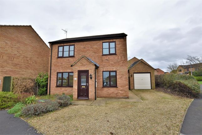 Thumbnail Detached house to rent in Foxglove Road, Stamford