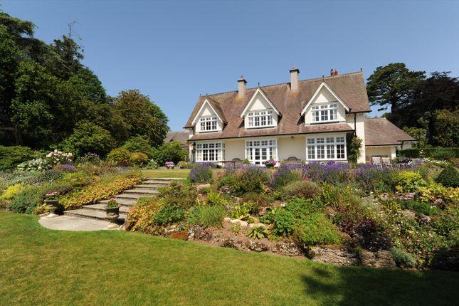 Thumbnail Detached house for sale in Chulmleigh, Devon