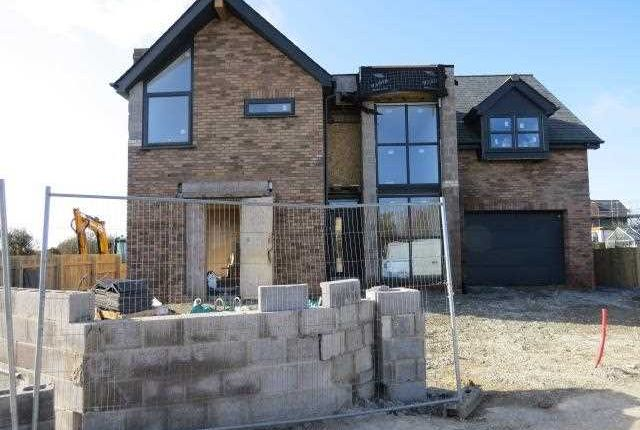 Thumbnail Detached house for sale in Llangristiolus, Bodorgan