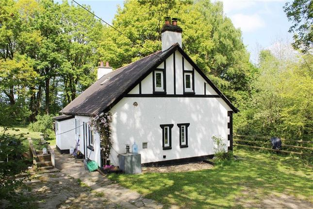 Thumbnail Cottage to rent in Llanfwrog, Ruthin, Denbighshire
