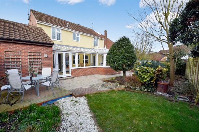 Thumbnail Detached house for sale in Lapwing Drive, Kelvedon, Colchester