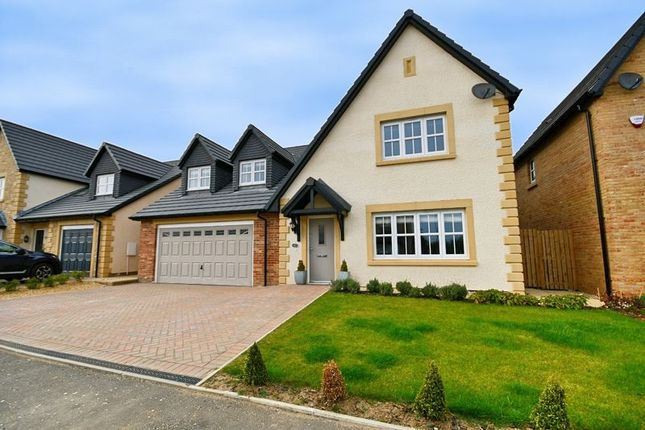 Thumbnail Detached house for sale in Harper Crescent, Longhoughton, Alnwick