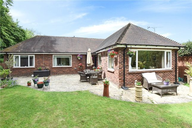 Thumbnail Detached bungalow for sale in North End Lane, Sunningdale, Berkshire