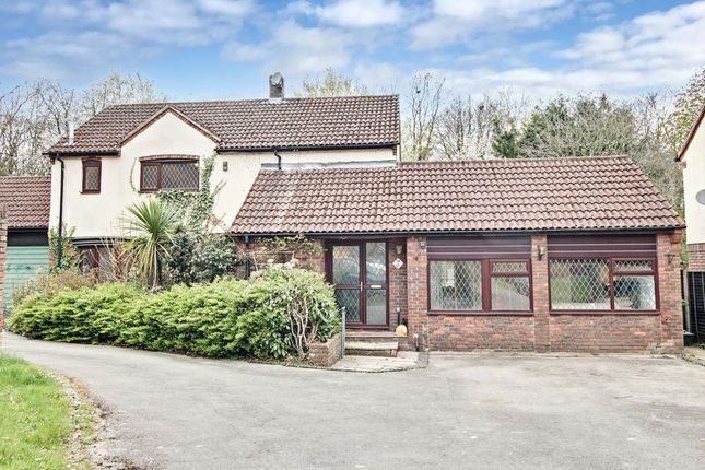 Thumbnail Detached house for sale in Crofters Meadow, Lychpit, Basingstoke