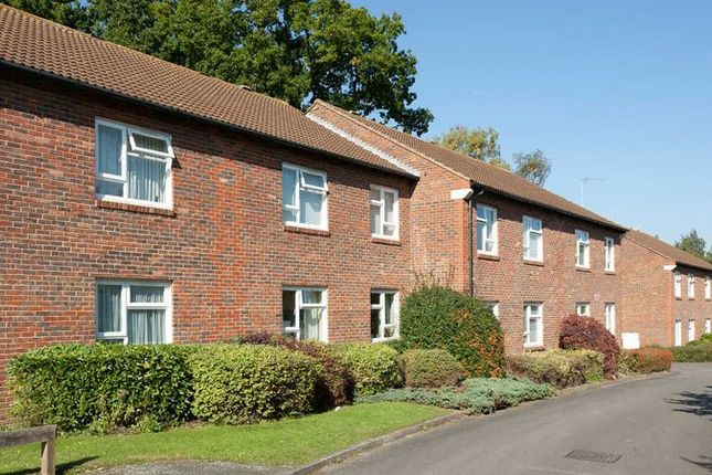Thumbnail Property for sale in Halleys Court, Woking