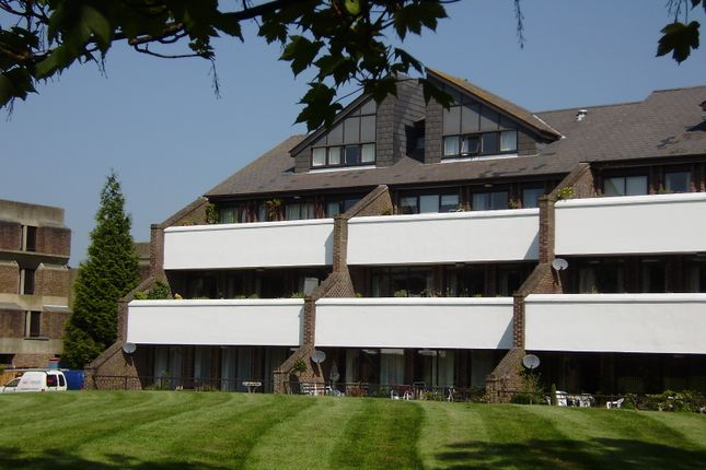 Thumbnail Flat to rent in Tollhouse Close, Chichester