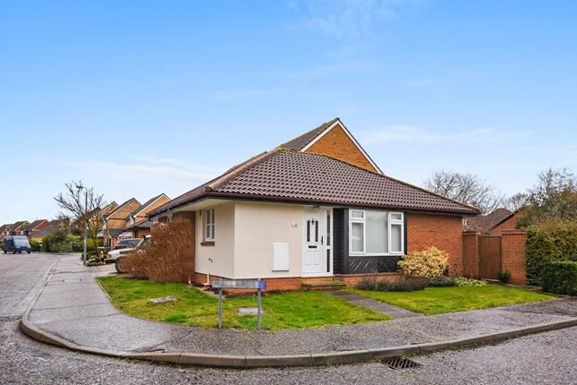 Thumbnail Bungalow for sale in Mallards, Chelmsford, Essex