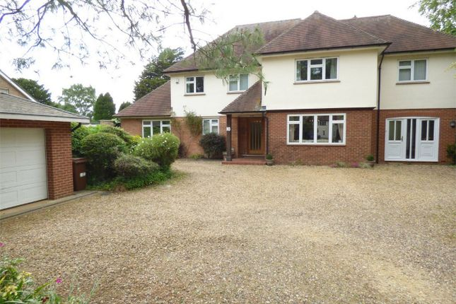 Thumbnail Detached house for sale in Westwood Park Road, Peterborough, Cambridgeshire