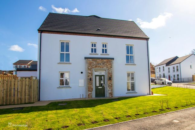 4 bed semi-detached house for sale in New Phase At The Hillocks, Altnagelvin, Londonderry BT47