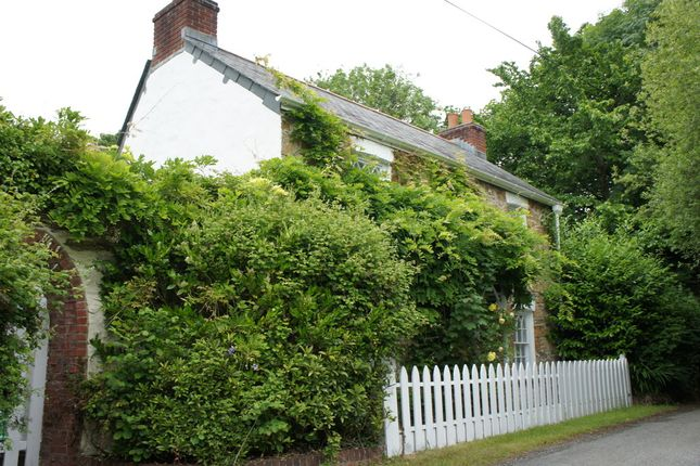 Thumbnail Cottage to rent in Idless, Truro
