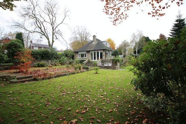 Thumbnail Detached bungalow for sale in Ox Pasture, Cheddleton, Leek