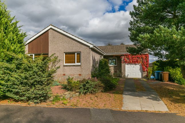 Thumbnail Detached bungalow for sale in Mauricewood Rise, Penicuik