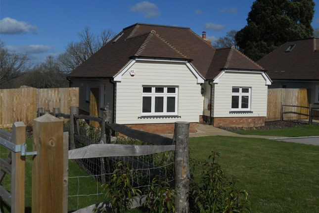 Thumbnail Bungalow for sale in Eden Hall, Cowden, Kent