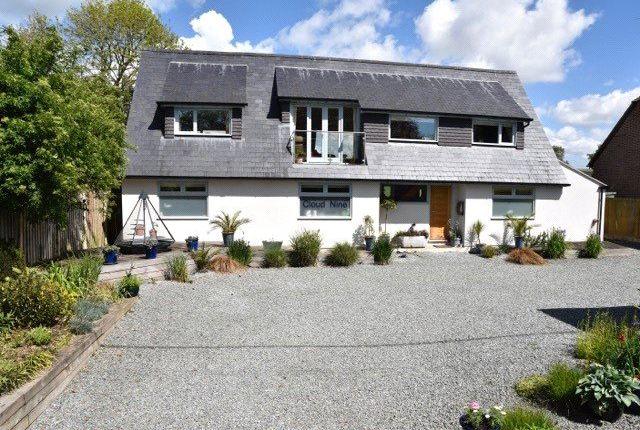 Thumbnail Detached house for sale in Tarrant Launceston, Blandford Forum