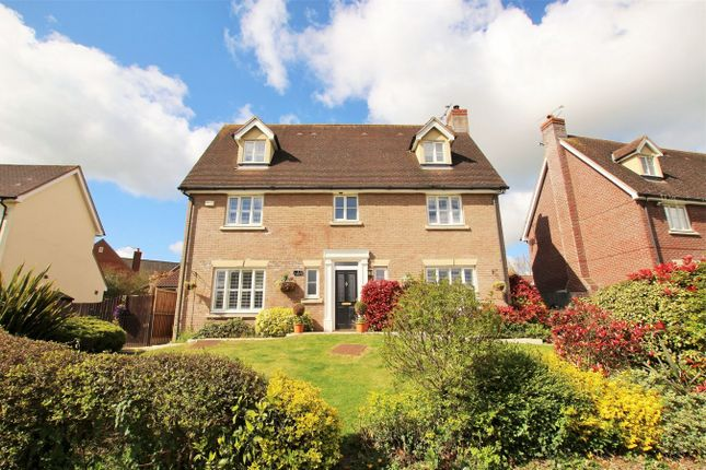 Thumbnail Detached house for sale in Queenborough Grove, Queenborough Lane, Great Notley, Braintree, Essex