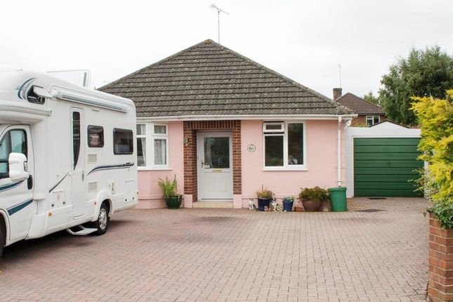 Thumbnail Detached bungalow for sale in Oakleigh Crescent, Totton, Southampton