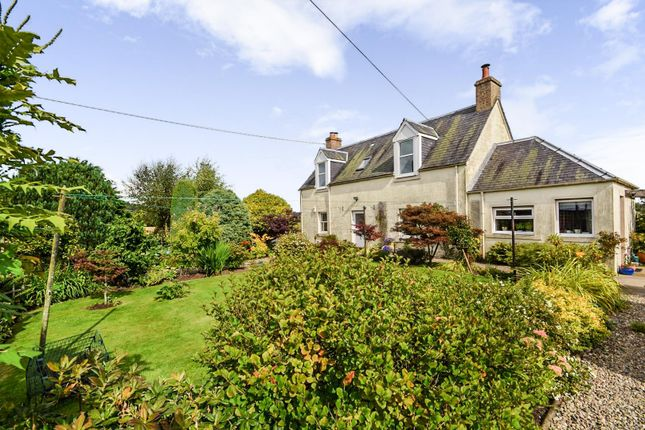 Thumbnail Detached house for sale in Roseangle, Meigle Road, Alyth