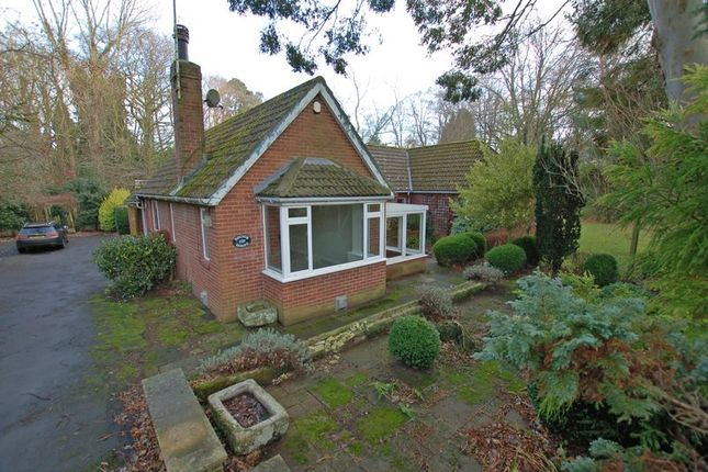 Thumbnail Bungalow for sale in Fox Covert Lane, Ponteland, Newcastle Upon Tyne