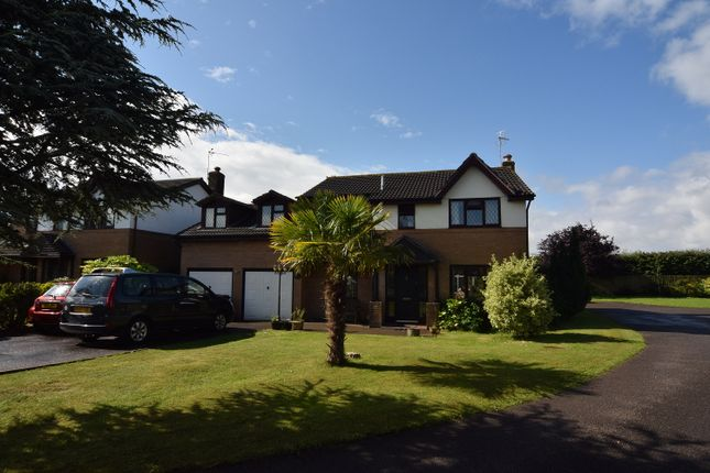 Thumbnail Detached house for sale in Vicarage Gardens, Marshfield, Cardiff, Newport