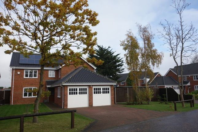 Thumbnail Detached house for sale in Harrier Drive, Lowestoft