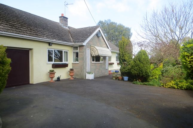 Thumbnail Detached bungalow for sale in Wolvershill Road, Banwell