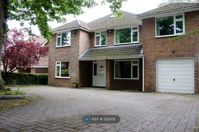 Thumbnail Detached house to rent in Oakwood Road, Southampton