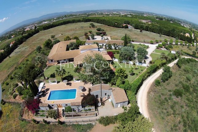 Thumbnail Detached house for sale in Centro, Silves, Silves