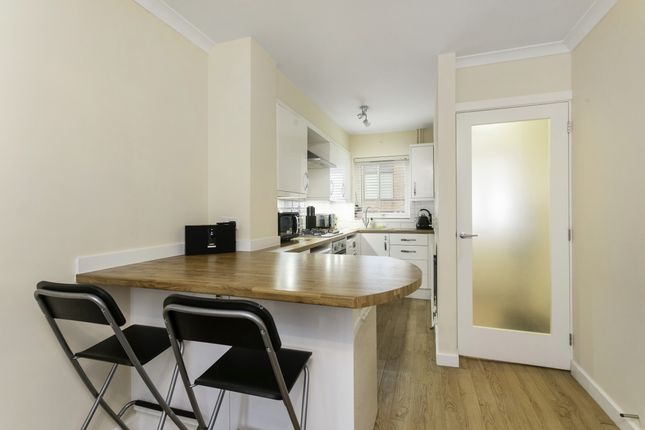 Thumbnail End terrace house to rent in Sussex Street, Winchester