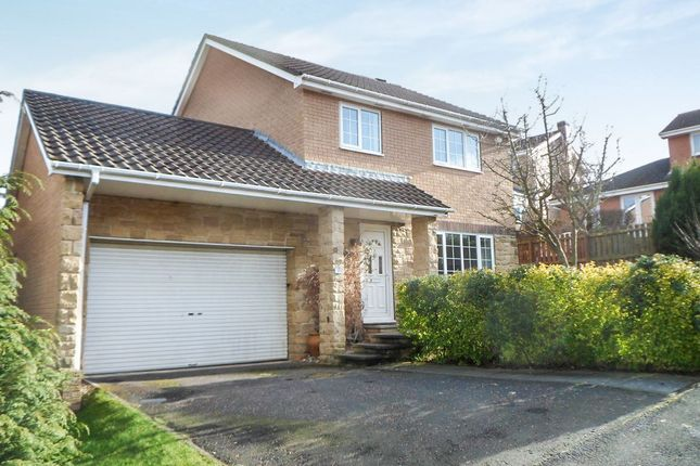 Thumbnail Detached house to rent in Collingwood Drive, Hexham