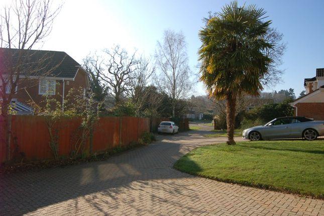 View Of Entrance of Higgs Lane, Bagshot GU19